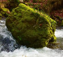 Boulder in the Stream by samandoliver