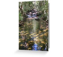 Florence Falls, Litchfield (NT, Australia) Greeting Card