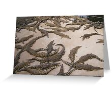 Estuary Crocodiles (NT, Australia) Greeting Card
