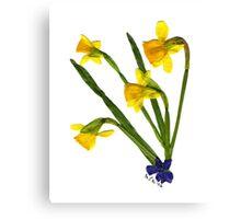 Spring Fling '06 - DAFFODILS Canvas Print