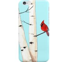 Cardinal with Birch Trees iPhone Case/Skin