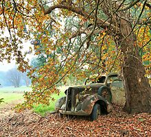 Days Gone By by Michael Boniwell