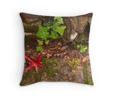 the lovely colours of autumn Throw Pillow