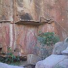 Aboriginal Rock Art by Ian McKenzie