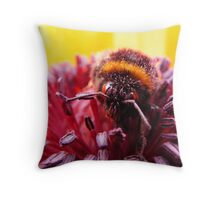 Pollen Thief Throw Pillow