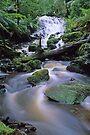 Cora Lynn Falls by Travis Easton