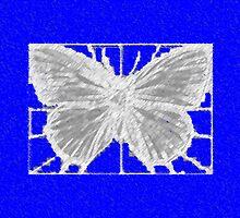 butterfly n blu by Thomas Josiah Chappelle