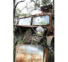 Queen of rust Photographic Print
