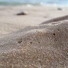 Sand Dunes by georgiegirl