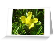 Gold in the Green Greeting Card