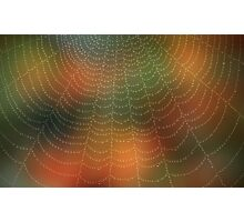 Water drops on a spider web Photographic Print