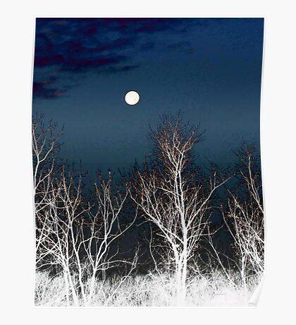 The Moon--Tarot Major Arcana Poster
