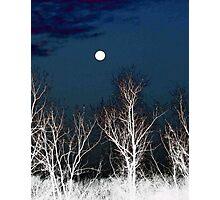 The Moon--Tarot Major Arcana Photographic Print