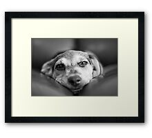face 2 face Framed Print