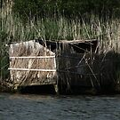 Duck Blind by Brad Staggs