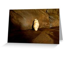 #1 Idaho Couch Potatoe Greeting Card