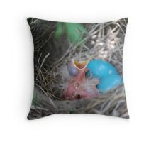 Young Robins Throw Pillow