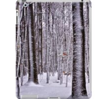 Winter in the Woods iPad Case/Skin
