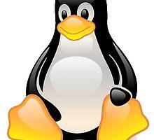 Penguin Linux Tux Crystal by SofiaYoushi