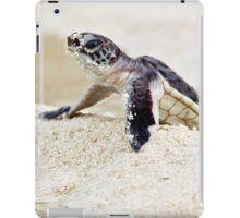 Baby green sea turtle iPad Case/Skin