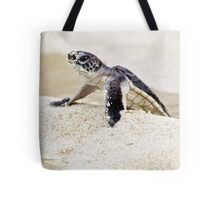 Baby green sea turtle Tote Bag