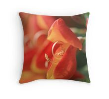 Red and Orange Broom Throw Pillow