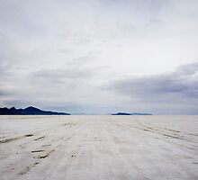 An infinity of salt. by Brent Olson
