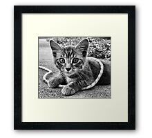 Jumping Jack Framed Print
