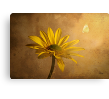 Expectant Canvas Print