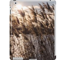 Reeds at Sunset iPad Case/Skin