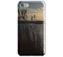 Winter Lake at Sunset iPhone Case/Skin