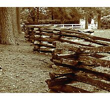The Old Fence Photographic Print