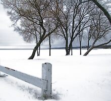 winter-lakeside by Janet Gosselin