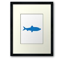 Blue herring Framed Print
