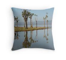 Lake Wairarapa Throw Pillow