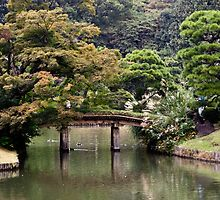 Wandering reflections - Tokyo, Japan by Norman Repacholi