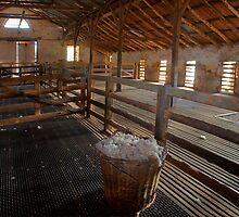 Shearing Shed at Bungaree Station by aluzhun