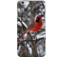 Beauty in the Snow. iPhone Case/Skin