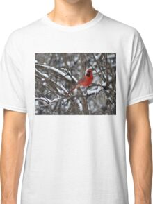 Beauty in the Snow. Classic T-Shirt