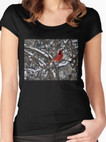 Beauty in the Snow. Women's Fitted Scoop T-Shirt