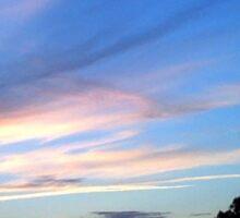 Beauty in the Sky. Sticker
