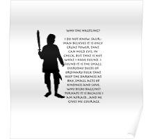 Why Bilbo? Poster
