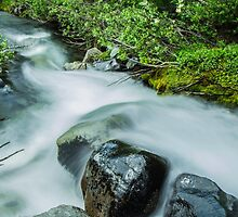 Rushing Waters of Paradise River by Nicole Petegorsky
