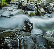 Rushing Waters of Paradise River #2 by Nicole Petegorsky