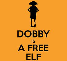 Dobby Is A Free Elf Unisex T-Shirt