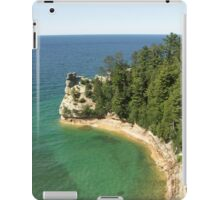 Pictured Castle iPad Case/Skin