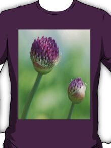 Shadowed Allium Buds - Purple And Green T-Shirt