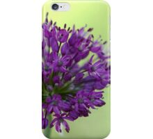 Star Clusters - Allium iPhone Case/Skin