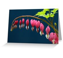 For Your Love - Bleeding Hearts Greeting Card