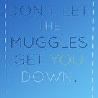 Don't Let The Muggles Get You Down by RoomWithAMoose